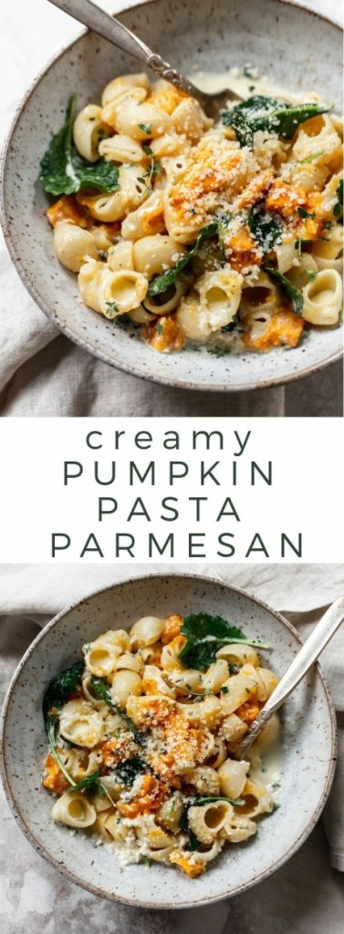 Pumpkin Pasta in Parmesan Garlic Cream Sauce