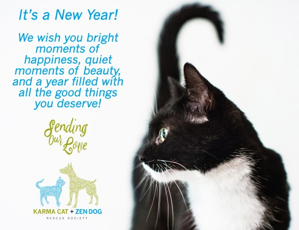 20 Cat New Year Quotes Pictures And Ideas On Carver Museum