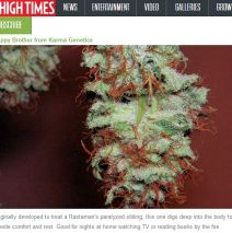 Happy Brother Listed as Top 5 Veteran Strain by High Times Magazine!
