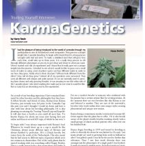 Karma Genetics featured in Treating Yourself Magazine