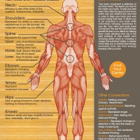 Infographic: Emotional Pain Chart