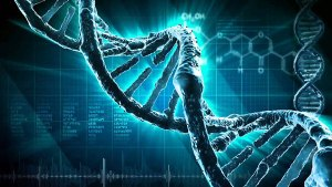 genome spiritual soul gene