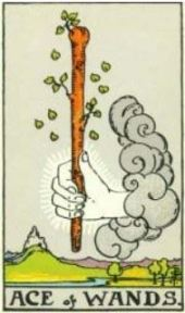 Rider-Waite Ace of Wands