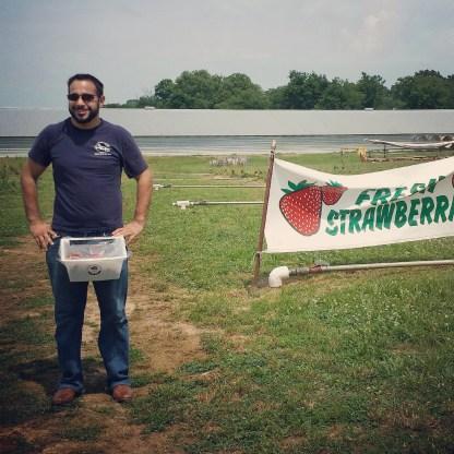 Garrett picking berries :)