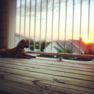 My boy loves watching the sunset.