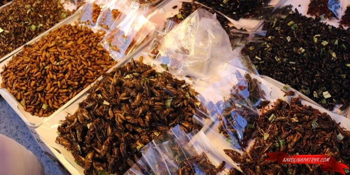 Fried insects for sale in Thailand