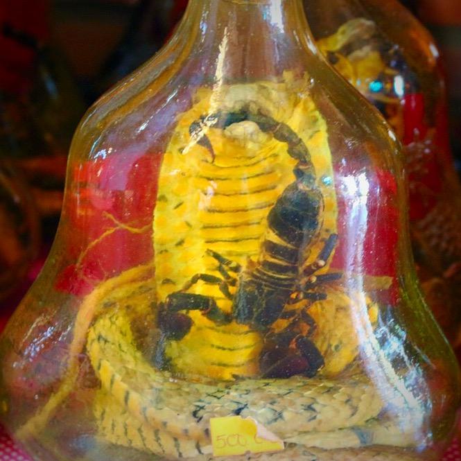 Vietnam interesting facts Snake wine