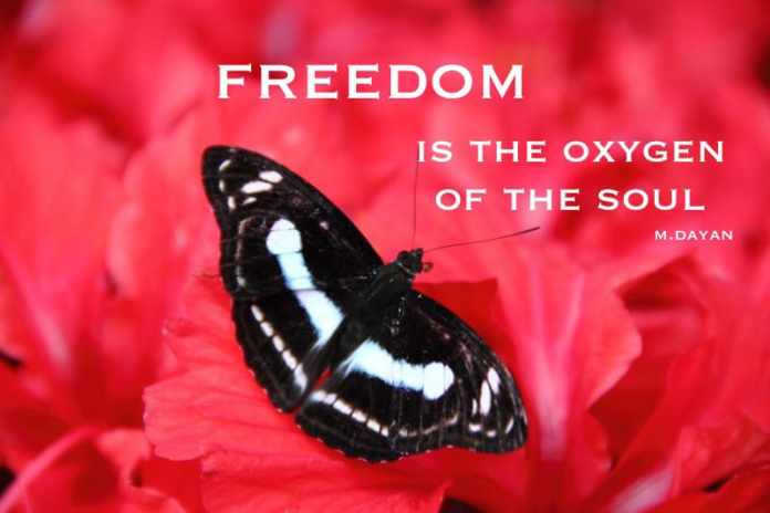 freedom-is-an-oxygen-of-the-soul motivational travel quotes