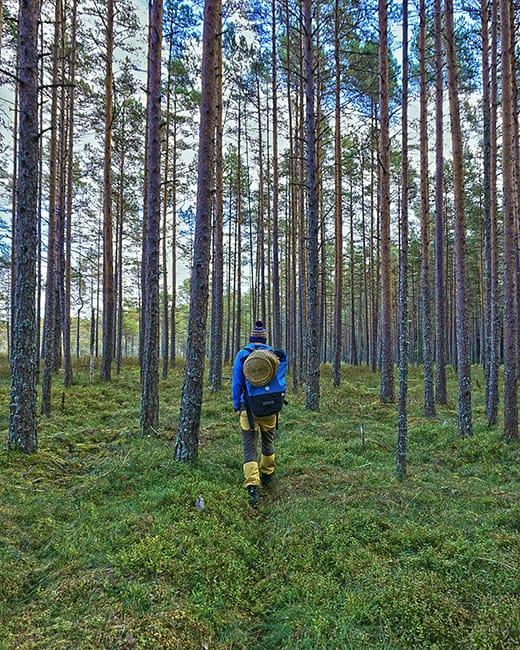 insta-estonia2