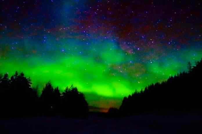 Interesting facts on Iceland: the nature | northern-lights-iceland