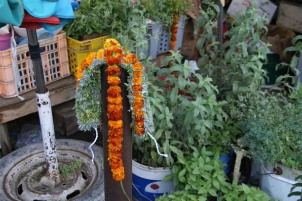 Da kann man auch den Blumen-/Kräuterkranz für die Haare kaufen.