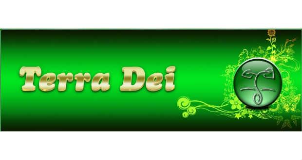 Civil szervezetek Kárpátalján: Terra Dei Alapítvány