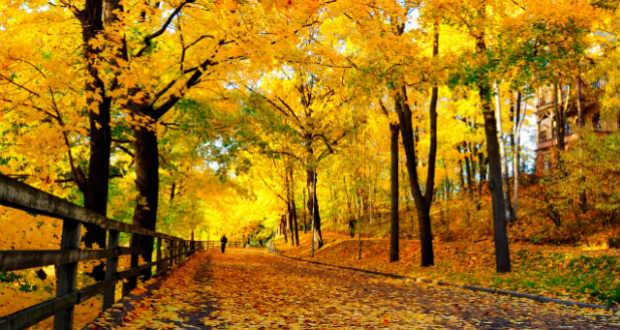 Vasárnap hajnali négykor betoppan az ősz