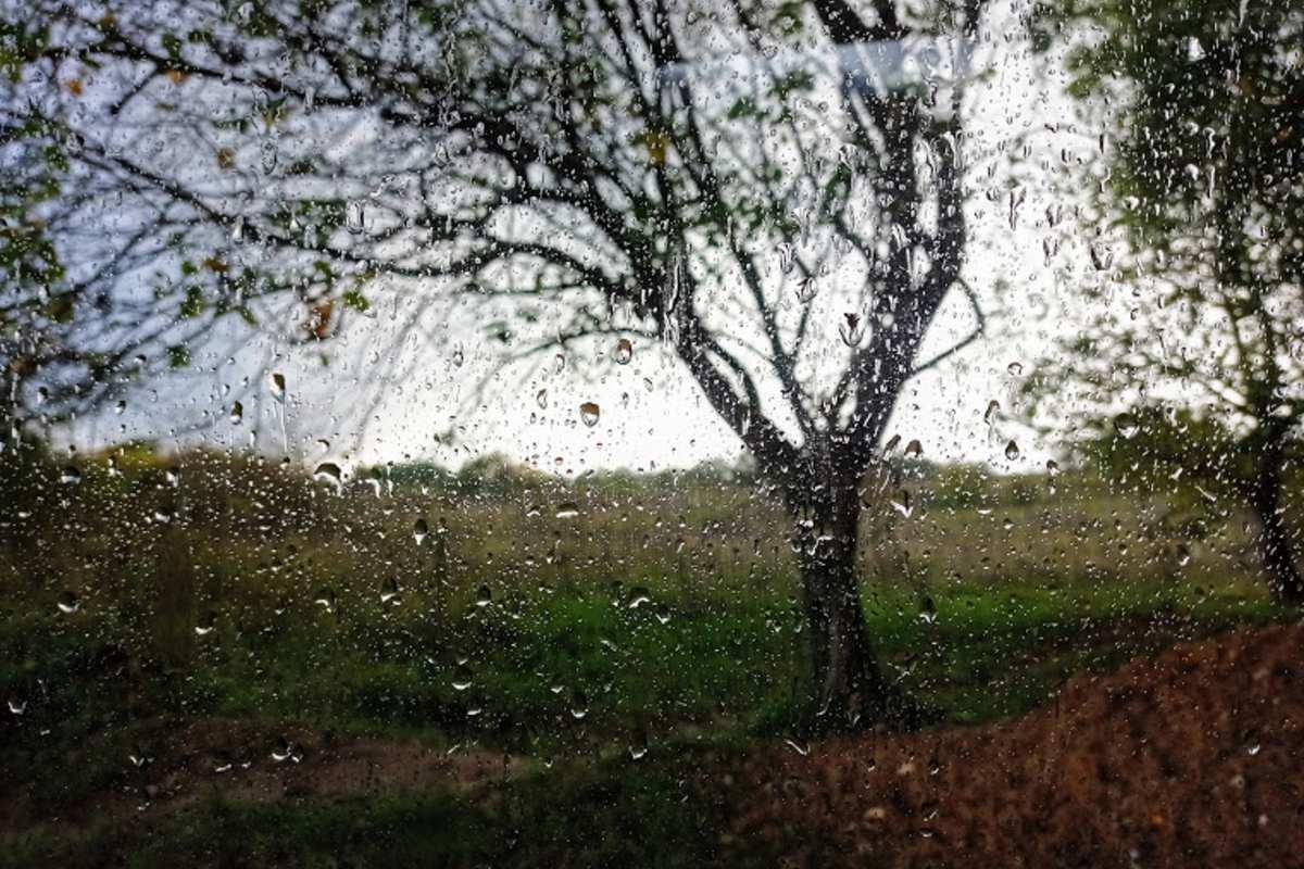 eső ősz