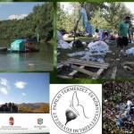 Önkénteseket keres a PAPILIO Egyesület