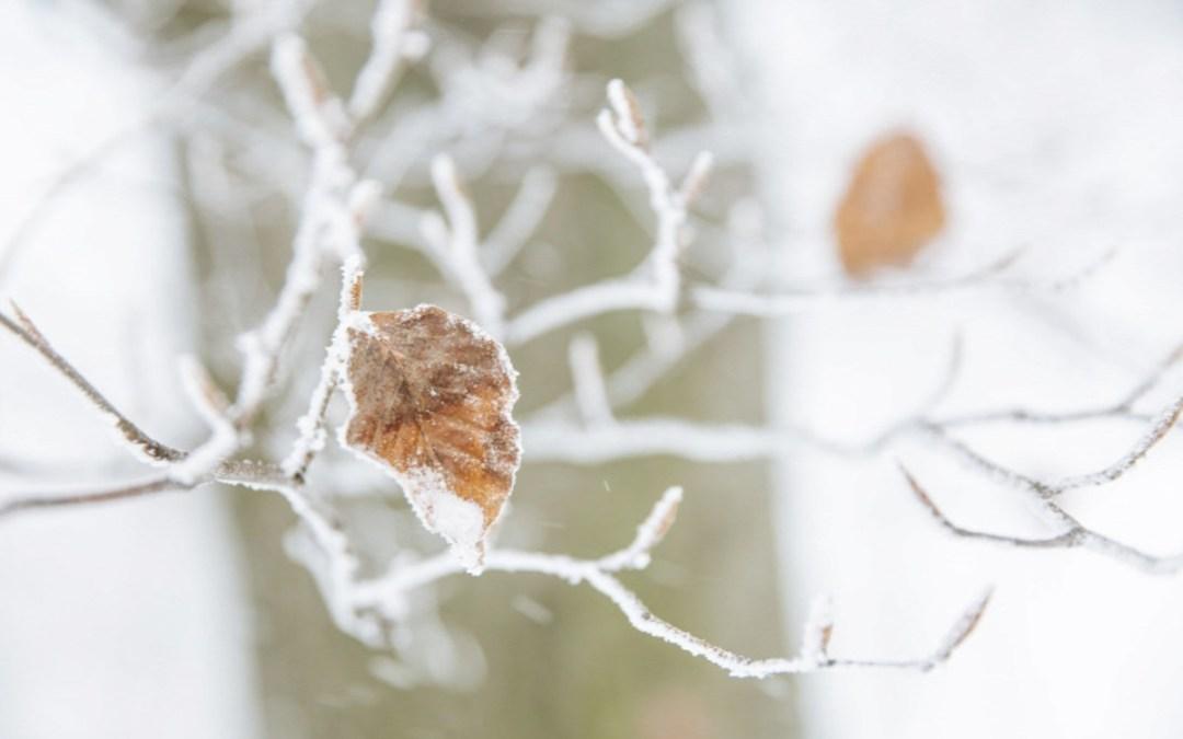 Havazás és fagy várható a hét utolsó napján