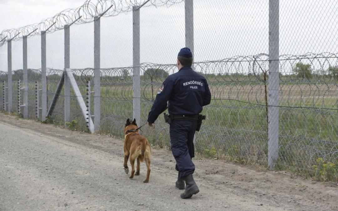 15 határsértőt fogtak el a román, ukrán és horvát határszakaszon