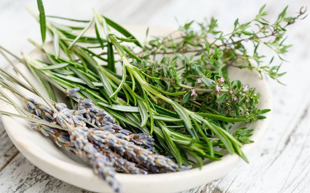 Gyógynövénycsokrok – Meghosszabbította pályázatát a Hagyományok Háza