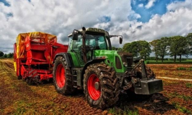 Mezőgazdasági vásárt szervez a KMKSZ