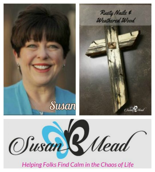 Susan B mead Rusty-Nails-Weathered-Wood