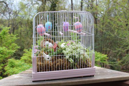 Vintage Southern Picks Easter Birdcage Better than a basket