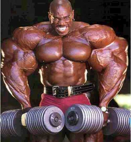 muscle_building_steroids4