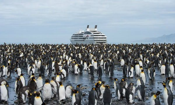 Chimu Adventures Antarctica