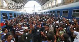 migrantenstrom-2