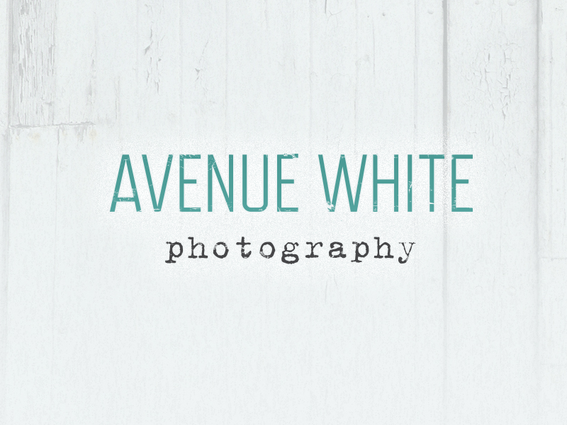 Logo Design Harrogate, Avenue White Photography branding project.