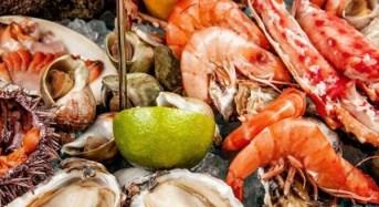Καθαρά Δευτέρα: Υπάρχει τρόπος να ξεχωρίσετε τα φρέσκα θαλασσινά