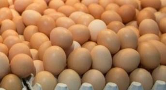 Η τακτική κατανάλωση αυγών  αυξάνει τον καρδιαγγειακό κίνδυνο, σύμφωνα με νέα έρευνα