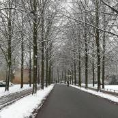 Die Promenade con nieve
