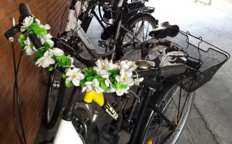 Guirnaldas bicicleta