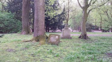 paseo cementerio muenster