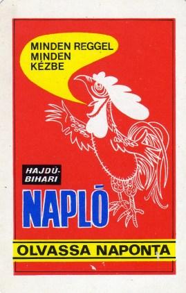 Hajdú-Bihari Napló - 1981