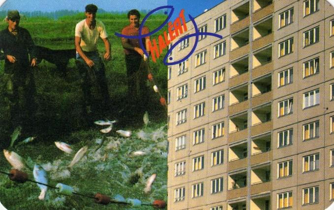 HALÉRT - 1981