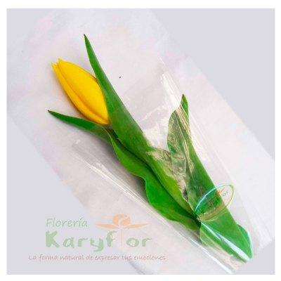 1 Tulipan en celofan (colores variados), inlcuye lazo. Pueden adicionarles chocolates ingresando a la opción REGALOS en la parte superior de la Pág. web.