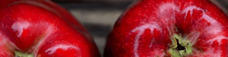 blogi dietetyczne Dietetyczne fanaberie