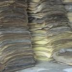 ราคากลางยางพาราเปิดตลาดวันนี้ (13 ส.ค.62)ยางแผ่นมาแตะเพดาน กก.ละกว่า 40 บาทอีกครั้ง