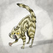 cat_doodle_111416