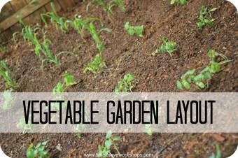 Vegetable Garden Layout (1)