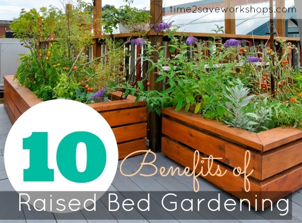 benefits-of-raised-bed-gardening