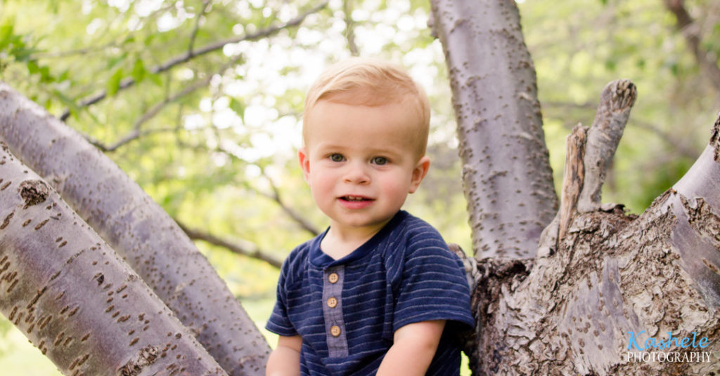 Utah County Milestone Photography session image of little man smith in a tree