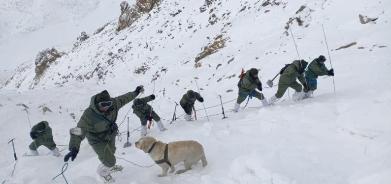 Leh Avalanche: 2 more bodies found, 3 porters still missing