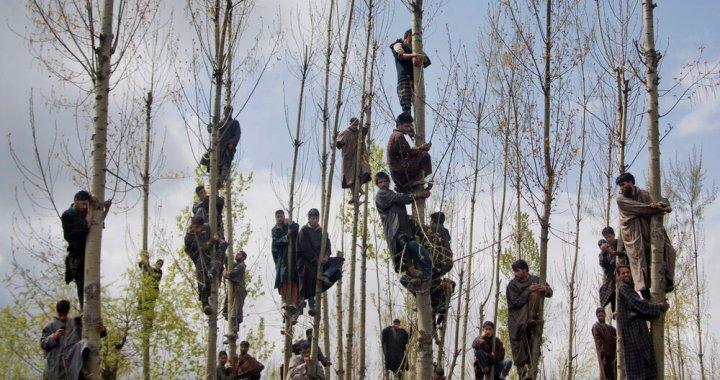 Kashmiri Photo-Journalist Dar Yasin wins the global award in Greece
