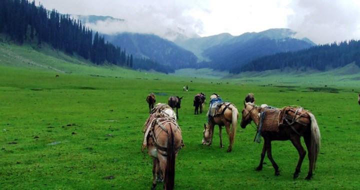 Bungus Valley – an unexplored Himalayan charm of Kupwara Jammu Kashmir