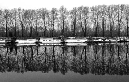 Ruffled Reflections: We often cast our image on running waters now, perhaps to make sense of our appearance. Mirrors of delight have been broken long back, when youth was put in prison. And our chinars, who would refresh weary travellers under their shadow too learnt to sail shadow on running waters in protest over the curb of travellers.