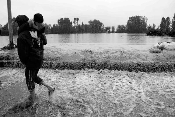 Flooded Srinagar.