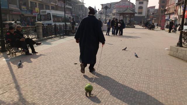 'Cabbage Walk' Artist