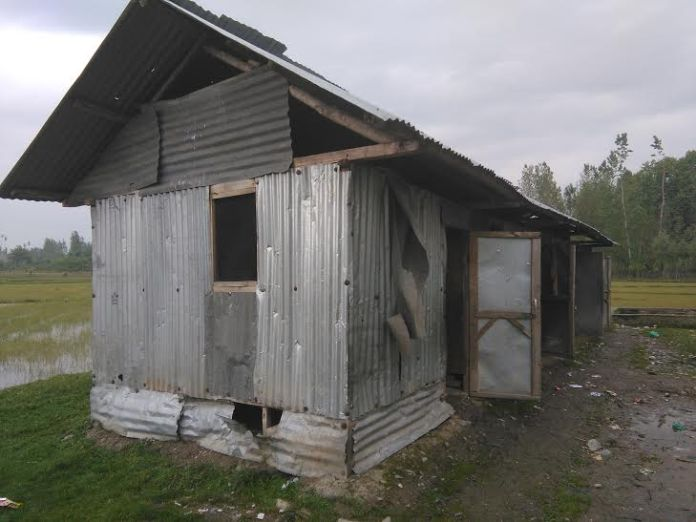 tin shed schooll